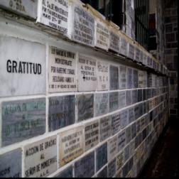 Gratitude for 2010