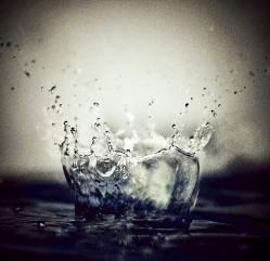 tech splash startup 2012